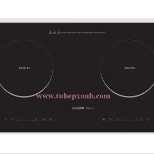 Bếp từ Fandi BX-225I